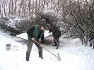 Winterfütterung 2010_4