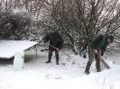 Winterfütterung 2010_6